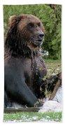 Grizzly Bear 6 Beach Towel
