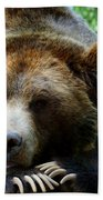 Grizzly Bear At Rest In Colorado Wildneress Beach Towel
