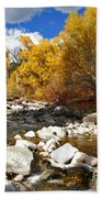 Grizzly Creek Canyon Beach Towel