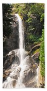 Grizzly Falls Beach Towel