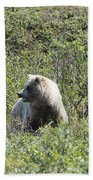 Grizzly One Beach Towel