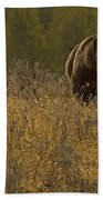 Grizzly Sow And Cub   #6365 Beach Towel