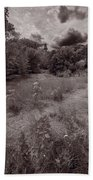 Gross Point Beach Grasses Bw Beach Towel