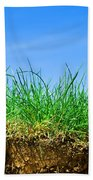 Ground And Grass Beach Towel
