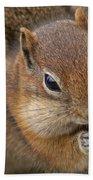 Ground Squirrel Beach Towel