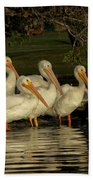 Group Of White Pelicans Beach Towel