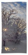 Grove And Road - Winter Beach Towel
