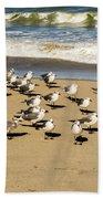 Gulls At The Beach Beach Towel