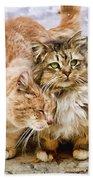 Gutter Kitties Five Beach Towel