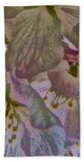 H Cherry Blossom Cont L Beach Towel