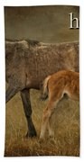 H Is For Horse Beach Towel