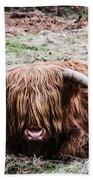 Hairy Cow Beach Towel