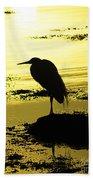Halcyon Beach Sheet