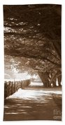 Half Moon Bay Pathway Beach Towel