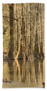 Hall Of Cypress Beach Towel