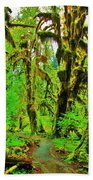 Hall Of Moss Beach Towel by Benjamin Yeager