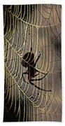 Halloween - Spider Beach Towel
