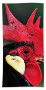 Handsome Rooster Beach Towel