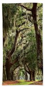 Hanging Moss And Giant Oaks Beach Towel