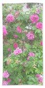 Hansa Roses Beach Towel