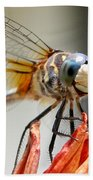 Happy Dragonfly Beach Towel