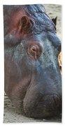 Happy Hippo Beach Towel