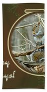 Happy Holidays Greeting Card - Gray Squirrel Beach Towel