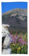 Happy Mountain Dog Beach Towel