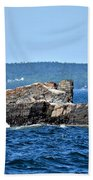 Harbor Rocks Beach Towel
