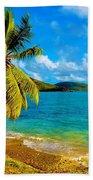 Haulover Bay Usvi Beach Towel