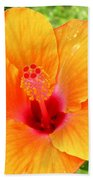 Hawaii Orange Hibiscus Beach Sheet