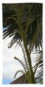 Hawaiiana 18 Beach Towel