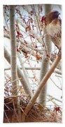 Hawk Nesting IIi Beach Towel
