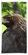Hawk Scouting Beach Towel