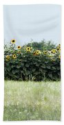 Hay Bales And Sunflowers Beach Towel