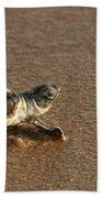 Heading Out To Sea Beach Towel