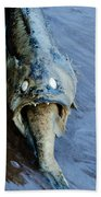 Heads Or Tails Beach Towel