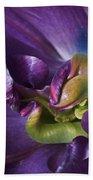 Heart Of A Purple Tulip Beach Towel
