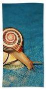 Heart Snails Beach Towel