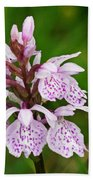 Heath Spotted Orchid Beach Towel