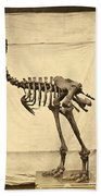 Heavy Footed Moa Skeleton Beach Sheet
