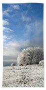 Heavy Frost Beach Towel by Anne Gilbert