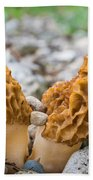 Heavy Lifting Morels Beach Towel