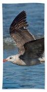 Heermanns Gull Beach Towel