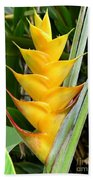 Heliconia Caribea Beach Towel