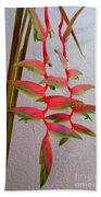 Heliconia Platystachys Beach Towel