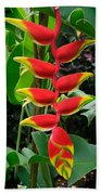 Heliconia Rostrata 2 - A Blooming Heliconia Rostrata Flower Beach Towel
