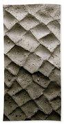 Herculaneum Wall Beach Towel