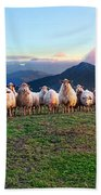Herd Of Sheep In The Sunset Beach Towel