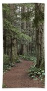 Heritage Forest Beach Towel